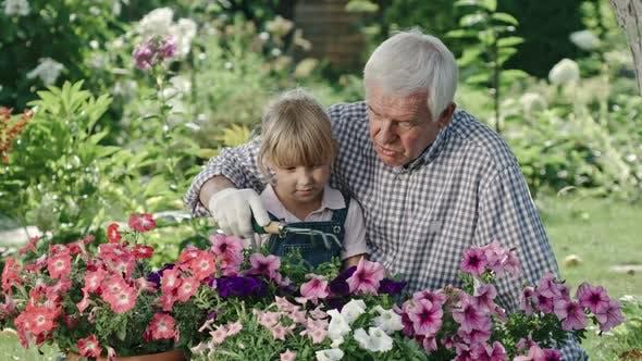 Thumbnail for Elderly Man Teaching Granddaughter Gardening