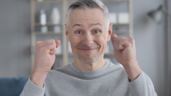Thumbnail for Portrait of Gray Hair Man Celebrating Success