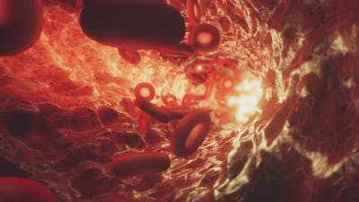 Red Blood Cells Moving in the Bloodstream in an Artery