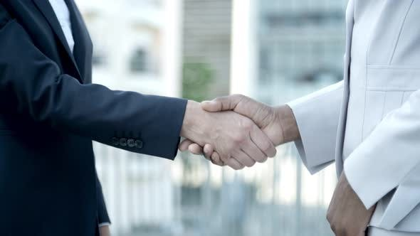 Thumbnail for Cropped Shot of Business Handshake Outdoor