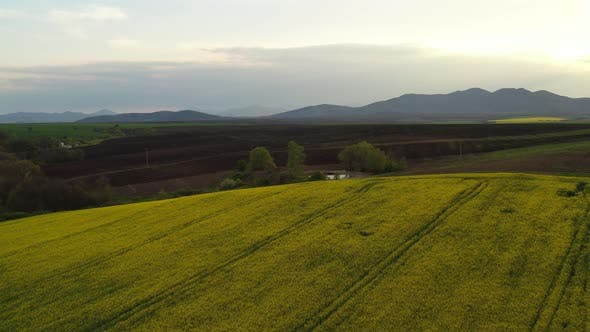 Spring Agricultural Landscape From The Air 3