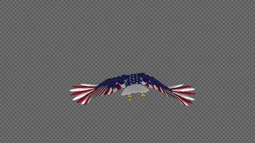 American Eagle - USA Flag - Flying Loop - Back View 4K