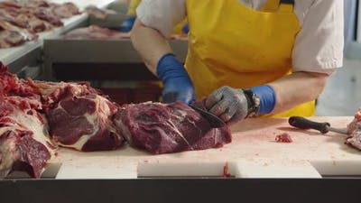 The Worker Separates The Veins From The Fillet Of The Meat. Meat Factory