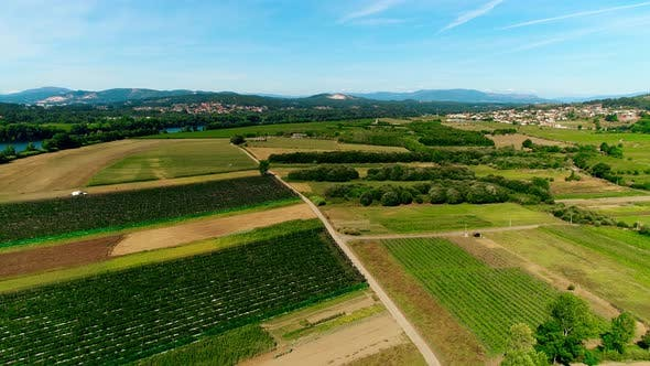 Cover Image for Aerial of Hilly Agricultural Fields in Portugal