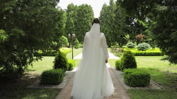 Thumbnail for Bride, Young Woman Walking in the Green Summer Park. Rear View. She Goes To Her Beloved Husband
