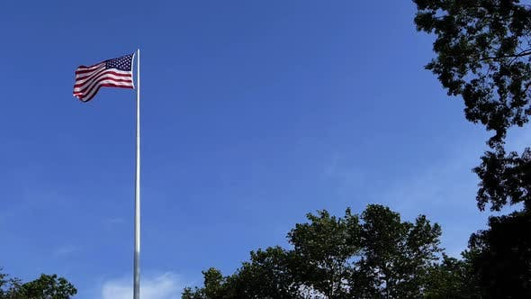 Thumbnail for USA Flag and Park Trees