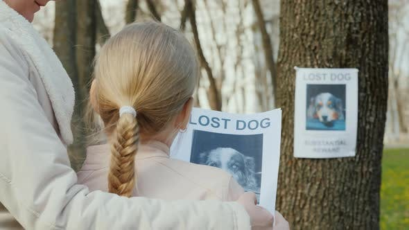 Thumbnail for Rear View of Mom Soothes the Girl Who Lost the Dog