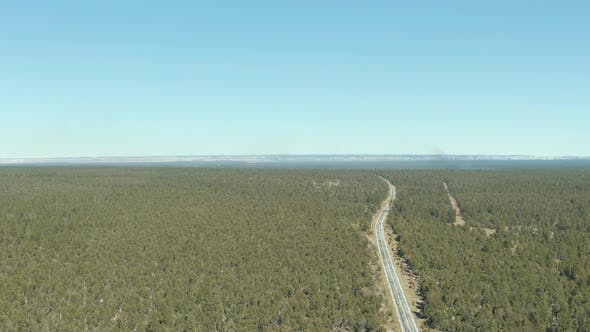 Thumbnail for Kaibab National Forest, Grand Canyon and Road. Arizona, USA. Aerial View