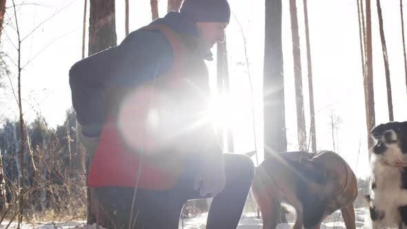 Thumbnail for Man Playing with Dogs on Winter Walk