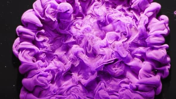 Paint Burst Purple Fluid Motion