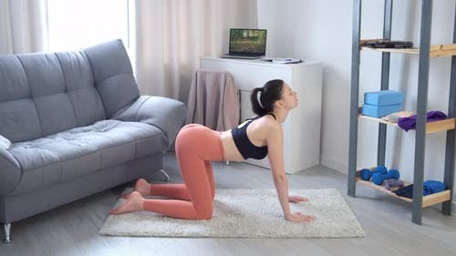 Woman in Sportswear Practicing Backbend in Cow and Cat Yoga Posture Side View