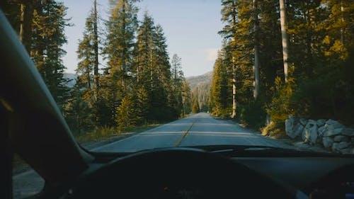 Schöne Aussicht vom Auto Lenkrad, Fahren entlang Mountain Forest Road im Yosemite Nationalpark