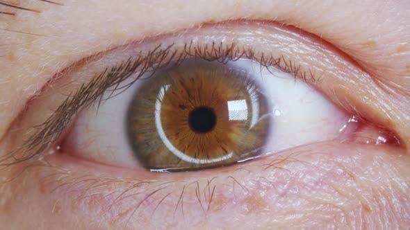 Extreme Close Up of Man Opening Eye