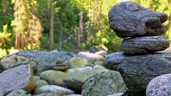 Thumbnail for Detail of Stones in the Forest