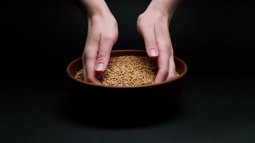 Taking Barley in Hands From Bowl on Black Background