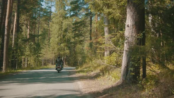 Thumbnail for Two Motorcyclists Riding Their Motorbikes in the Coniferous Forest - Bright Day