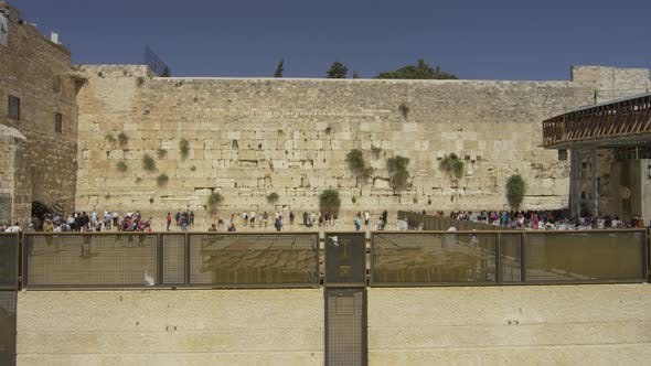 Thumbnail for Wailing Wall seen from the Western Wall Plaza