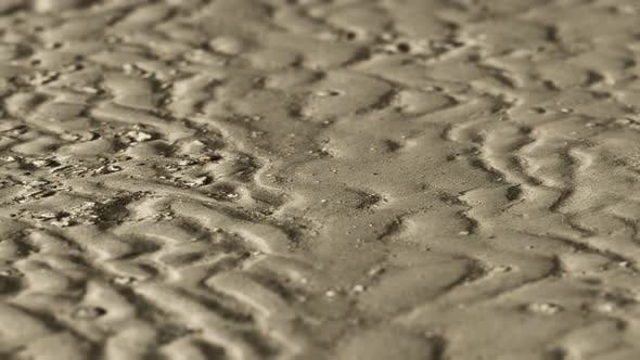 Thumbnail for Lines in the Sand of a Beach