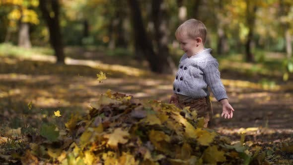 Thumbnail for Cute Toddler Boy Playing with Leaves in Park