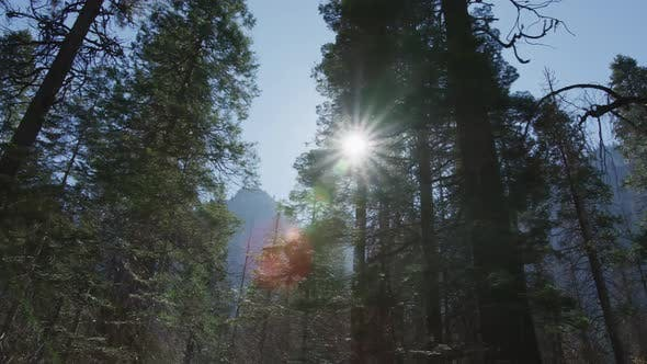 Thumbnail for Day In Yosemite Park