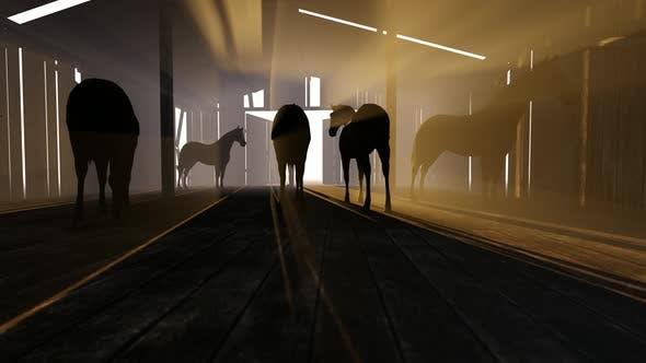 Pferde Und Pferdesitter