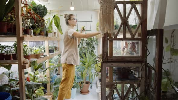Cheerful Female Florist Misting Houseplants on Shelves
