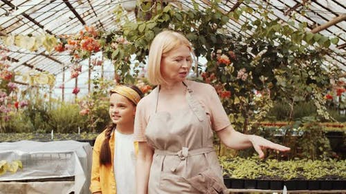 Female Farmer Discussing Plants with Little Granddaughter in Greenhouse