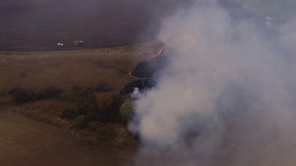 Dry Lanes in Fire, Firefighters at Work, Disaster