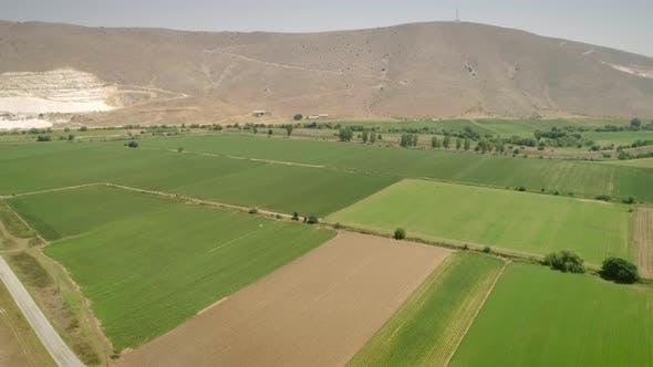 Luftaufnahme von Feldern umgeben von Vegetation und Hügeln.