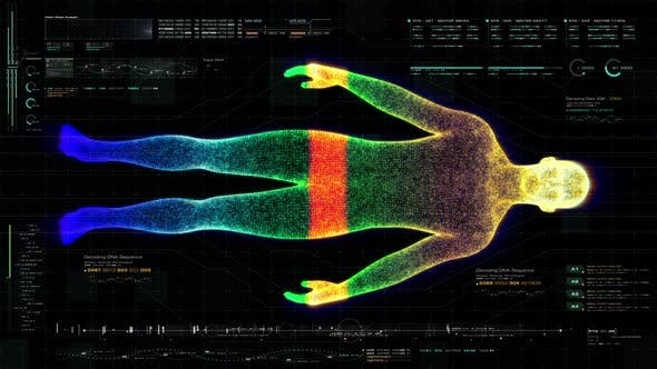 Cover Image for Futuristic Biomedical Diagnostic HUD