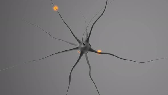 Thumbnail for 3D rendered Animation of a neural cell