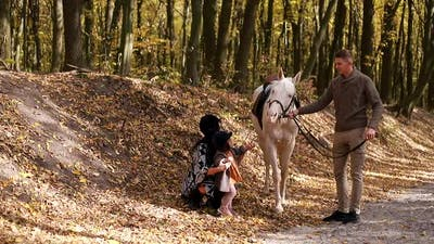 Family on vacation with a horse, a walk with a horse in the woods