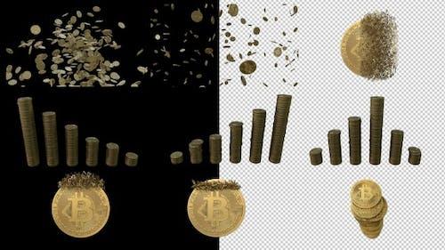Bitcoin Multi Pack