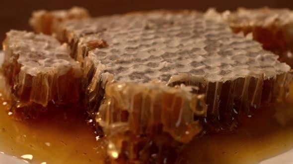Thumbnail for Honeycomb