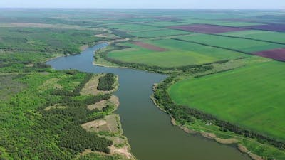 Agricultural fields and forest on the shore of the reservoir.