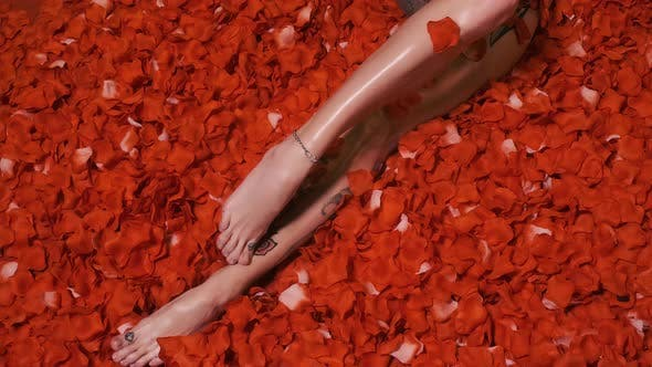 Thumbnail for Woman Lies in Red Petals