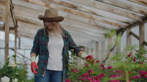 Happy Woman with Flowers in Greenhouse. People, Gardening and Profession Concept - Happy Woman with