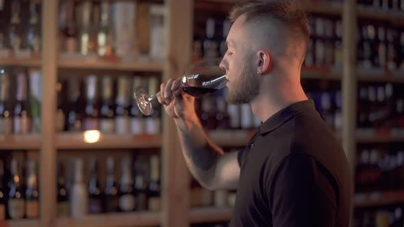 Thumbnail for Portrait of Handsome Guy in Profile Admiring Wine in the Glass