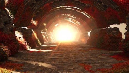 Magic Tunnel