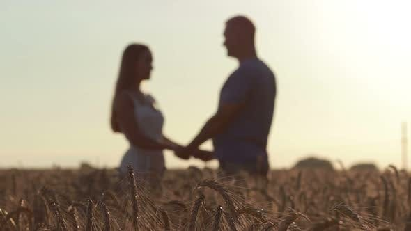 Cover Image for Couple Holding Hands in Wheat Field at Sunset