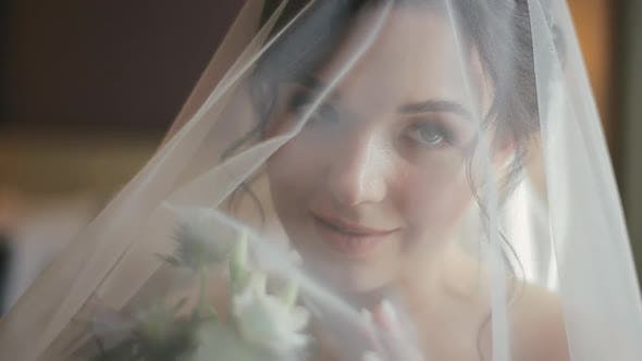 Thumbnail for Close-up Shot of Attractive Face of Attractive Young Bride in a Veil and White Wedding Dress