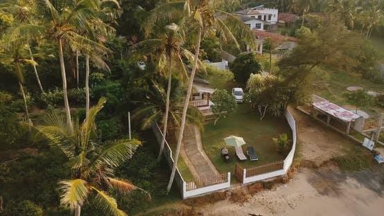 Cover Image for Drone Flying Around Small Idyllic Tropical Resort House Among Big Palm Trees, Man Sitting and