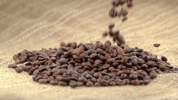 Cover Image for Coffee Beans Falling on the Sack