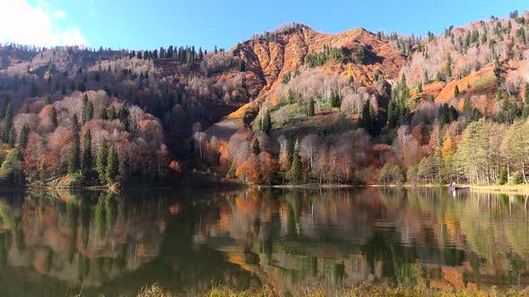 Thumbnail for A Tranquil Calm Lake in the Red Forest in Autumn