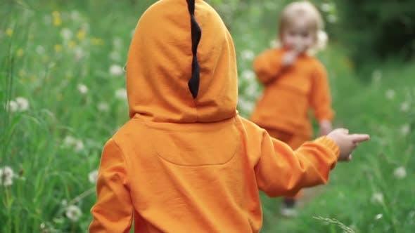 Little Twin Boys in Bright Orange Hoodies Walk in Nature, Slow Motion