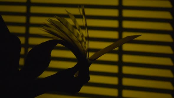 Thumbnail for Turning the Pages of a Book. Silhouette. Slow Motion. Close Up