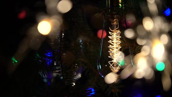 Cover Image for Sparklers and a Light Bulb Are Lit Against the Backdrop of a Christmas Tree
