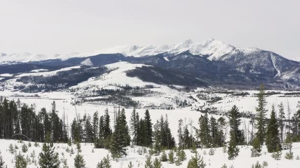Cover Image for Winter Snow Sunny Day Aerial Flying Over Trees Drone Aerial View of Colorado Mountain Range