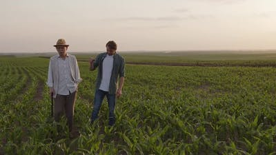 Discussion of Two Men on a Green Corn Field