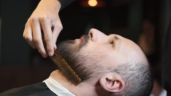 Thumbnail for Male Barber Combing Beard at a Barber Shop